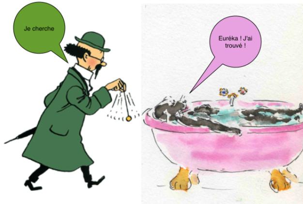 http://media.paperblog.fr/i/372/3725022/rencontres-inattendues-memphis-professeur-tou-L-1.png