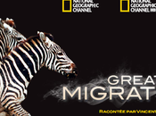 National Geographic Channel partenariat avec présente Great Migration
