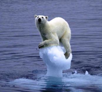 climat-demeure-preoccupations-majeures-popula-L-1.jpeg