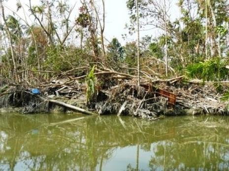 Cyclone_sidr_au_bangladesh_112007