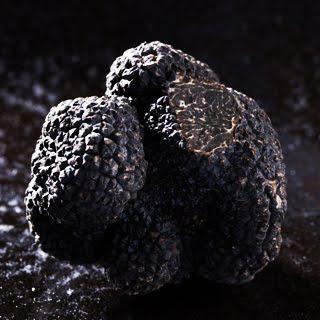 La truffe noire bruxelles paperblog for Porte noire brussels