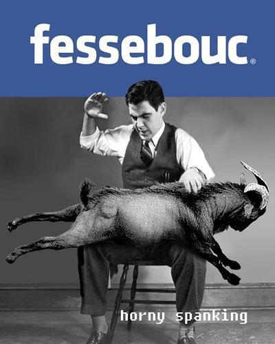 http://media.paperblog.fr/i/395/3950934/photo-marrante-facebook-fessebouc-L-WCQzeQ.jpeg