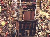 Bibliothèque Fric-Frac 2010 Club