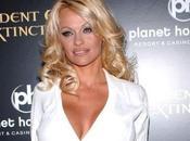 Pamela Anderson Choquée agressif