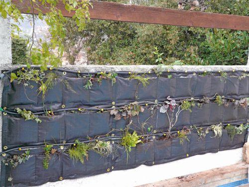 le mur v g tal en plantes voir. Black Bedroom Furniture Sets. Home Design Ideas