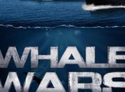 Whale Wars bataille pour baleine débuté