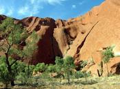 Australie Uluru rocs rouges Kata Tjuta