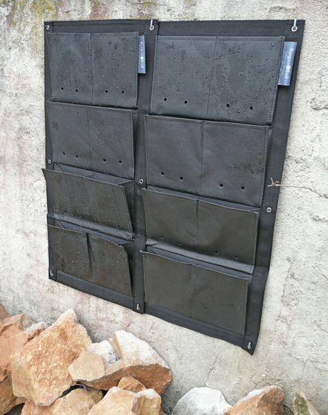 un nouveau support de mur v g tal paperblog. Black Bedroom Furniture Sets. Home Design Ideas