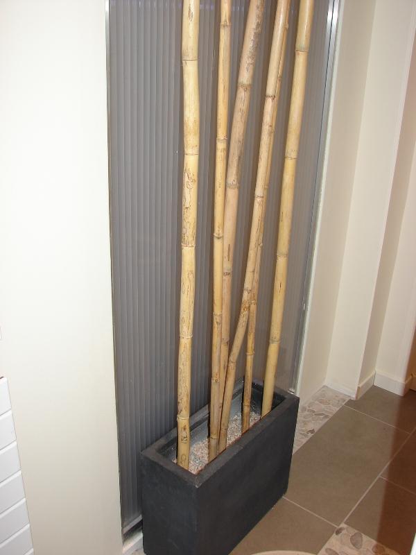 Projet bambous dans ma salle de bains paperblog for Dans ma salle de bain chanson