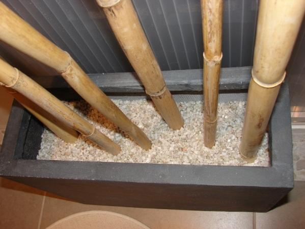 Revetement sol salle de bain bambou design d 39 int rieur for Deco bambou salle de bain