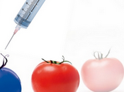Purifunction laboratoire l'alimentation demain