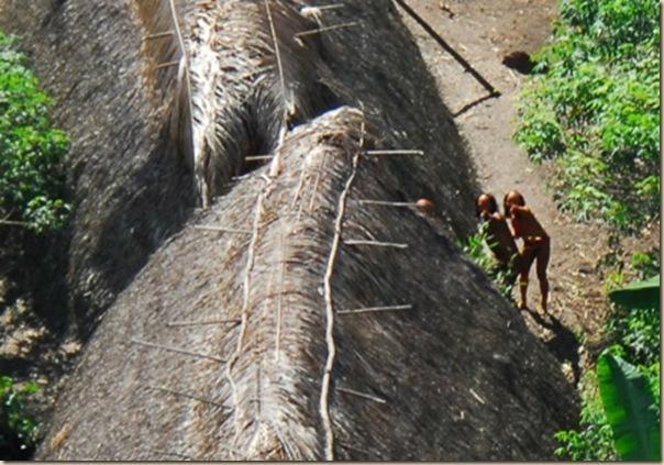 Les indiens isol s du br sil d couvrir - Pomme de terre prospere ...