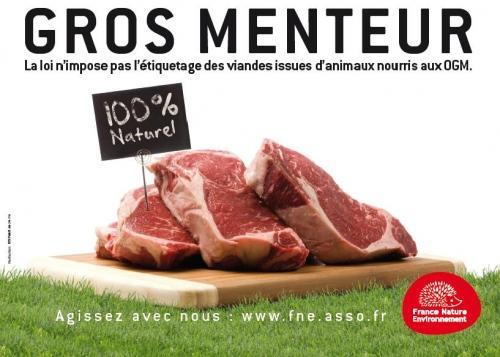 http://media.paperblog.fr/i/417/4171087/campagne-fne-ogm-algues-vertes-pesticides-L-jFrnEI.jpeg