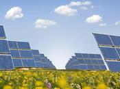 Photovoltaïque Lettre ouverte premier ministre