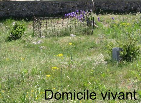 20030515-154127_chateauneuf.1201641970.jpg