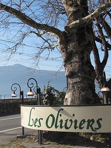 Restaurant Bord Du Lac Brison Saint Innocent