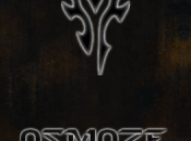 Osmoze Theme thème World Warcraft