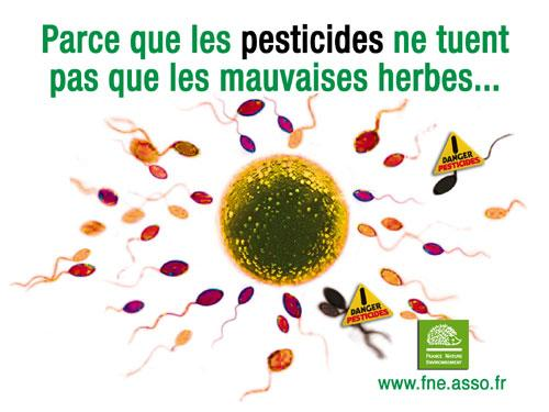 http://media.paperblog.fr/i/426/4261645/linvs-lance-lalerte-pesticides-L-Az1Tqq.jpeg