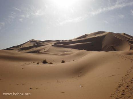 Around the Boz... in the Moroccan desert