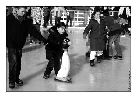 patinoire_20_copie