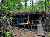 Colombie: boom cocaïne liquide