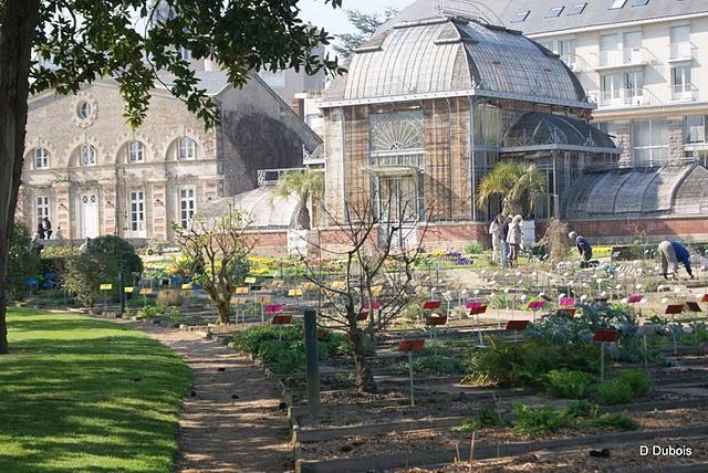 Salon De The Jardin Des Plantes Nantes – Qaland.com