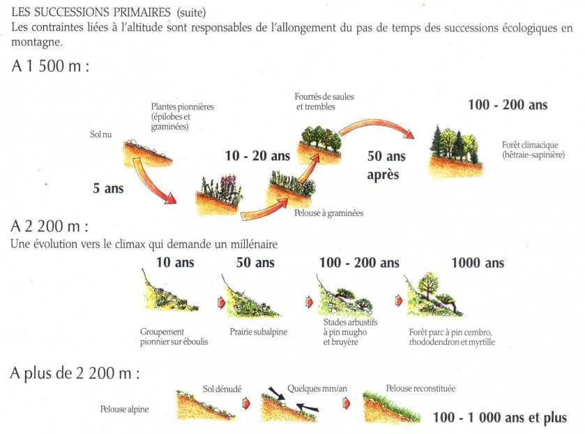 Evolutiondesécosystèmes