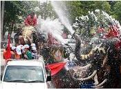 C'est Nouvel thaï: Happy Songkran (สงกรานต์)