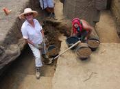 Rano Raraku intérieur arrière moai (numérotation Routledge) 18/02/2011