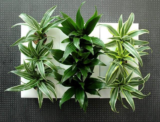 Triooo le tableau v g tal facile sobre et pas cher paperblog - Tableau vegetal mural pas cher ...