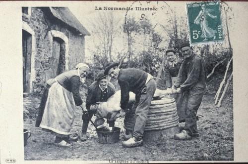 Tradition de normandie la saign e du cochon paperblog - Point de saignee ...