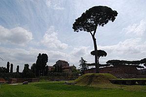 Rome le pallatin