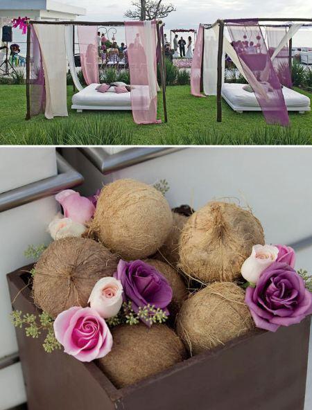 Palmiers et cocotiers pour mariage paperblog - Palmier noix de coco ...