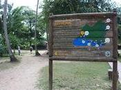 Colombie épidémie SIDA chez FARC