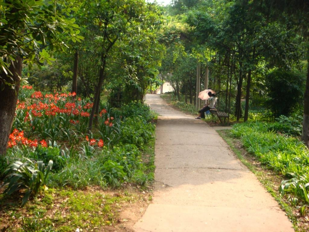 jardin botanique ii lire