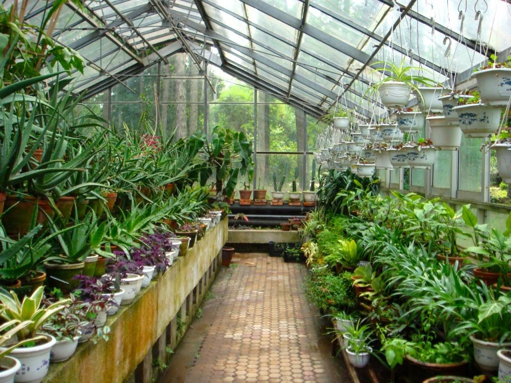 jardin botanique ii lire. Black Bedroom Furniture Sets. Home Design Ideas
