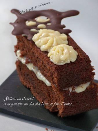 G_teau_au_chocolat_et_sa_ganache_au_chocolat_blanc_et_f_ve_Tonka_2