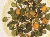 Salade cresson kumquats pignons grillés