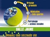Fédération Française Tennis tape balle verte…