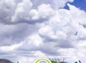 Installer cyanogenmod officielle Samsung Galaxy i9000