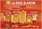 rose blanche essay Find information about academic papers by weblogrcom rose blanche esenin a voulu 芦 marier sur terre / la roseblanche avec le noir crapaud 禄.