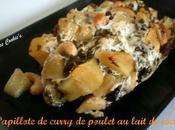 Papillote curry poulet lait coco, pommes, raisins secs noix cajou