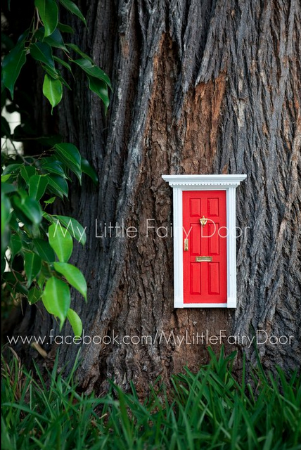 Une petite porte vers le monde des f es voir for Petite porte bois