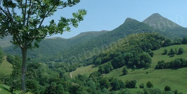 Le pays vert - Cantal