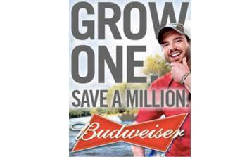 Protégez la planète avec Budweiser