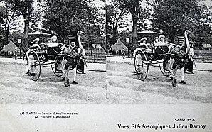 ParisXX-JA-autruche