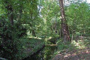 Paris Bois de Boulogne