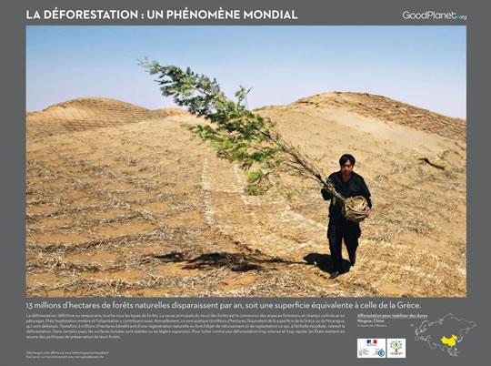 Exposition «Des Forêts et des Hommes»