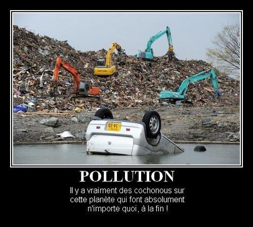 Pollution par des cochonous