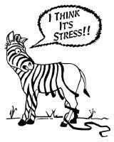 Suicide du au  stress